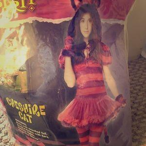 Tween Cheshire Cat Halloween Costume 10-12